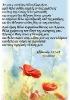 Edafia (115)