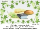 Edafia paidika (119)